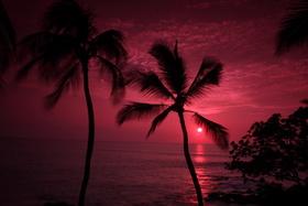 Kona Sunset