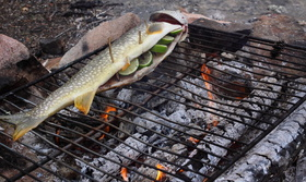 Hot coals and fresh fish
